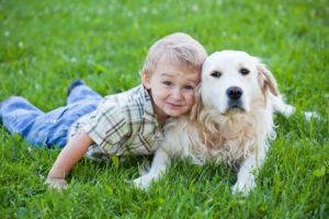 EL BENEFICIO DE TENER  MASCOTAS EN CASA, Autismo y animales